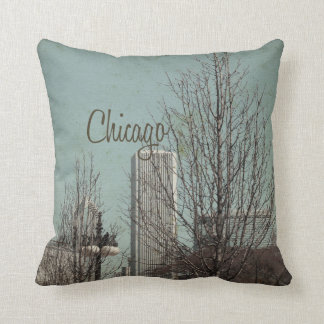Downtown Chicago Cushion