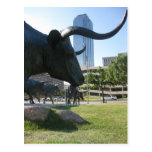 Downtown Dallas, Texas Post Cards