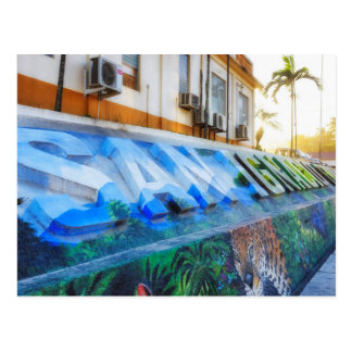 Downtown San Ignacio Belize Mural Post Card