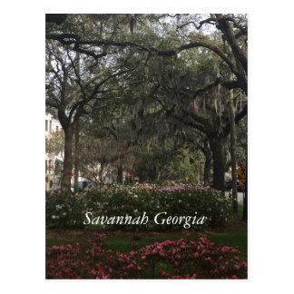 Downtown Savannah Georgia Postcard