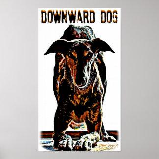 Downward Dog Poster
