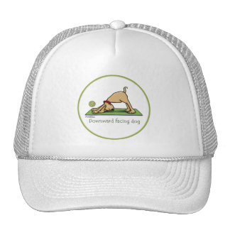 Downward Facing Dog - yoga hat