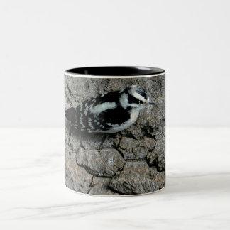 Downy Woodpecker Black 11 oz Two-Tone Mug