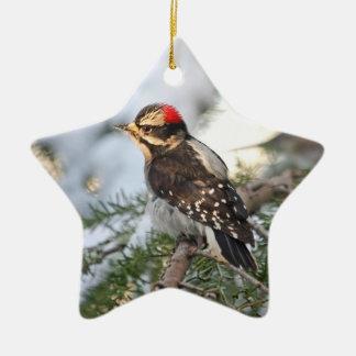 Downy Woodpecker Ceramic Ornament