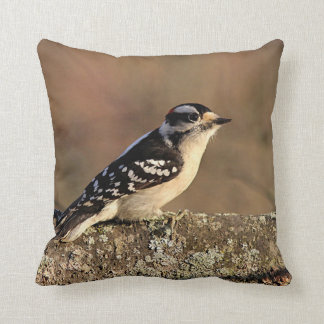 Downy woodpecker cushion