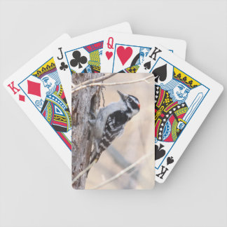 Downy Woodpecker Playing Cards