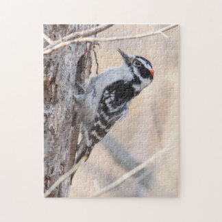 Downy Woodpecker Jigsaw Puzzle