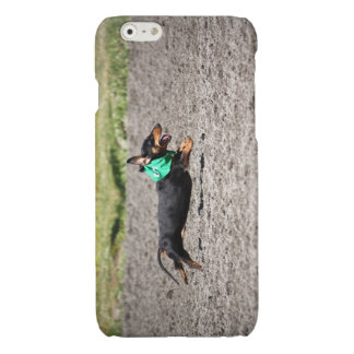 Doxie iPhone 6/6S case