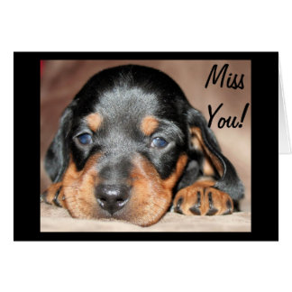 Doxie Pup Card
