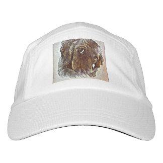 Doxie puppy hat