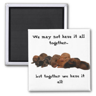 Doxie pups, We may not have it all together...,... Magnet