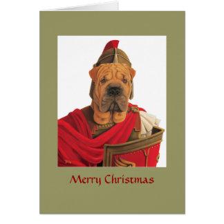 DR068 Shar Pei, Merry Christmas Card