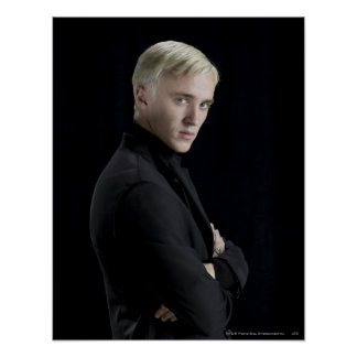 Draco Malfoy Arms Crossed Poster