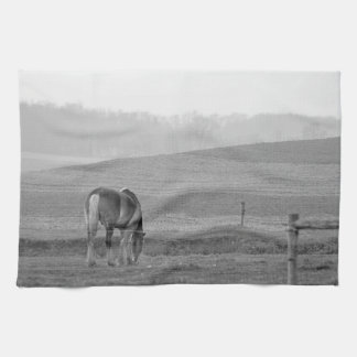 Draft Horse in Black and White Tea Towel