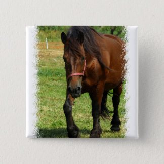 Draft Horse Square Pin