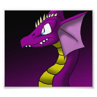 Dragon 3/24/13 Photo Print