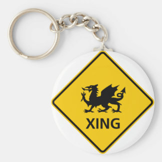 Dragon Crossing Highway Sign Basic Round Button Key Ring