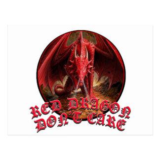 Dragon Dont Care Postcard