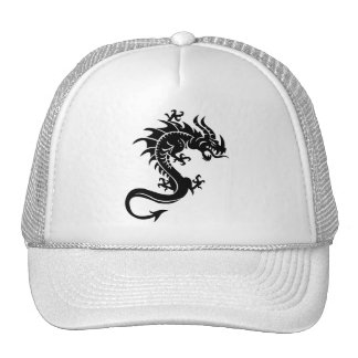 Dragon, Dragon Trucker Hat