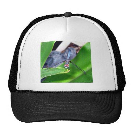 Dragon Fly Trucker Hats