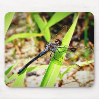 Dragon Fly Mouse Pad