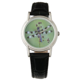 Dragon fly perched on grass, Canada Wrist Watch