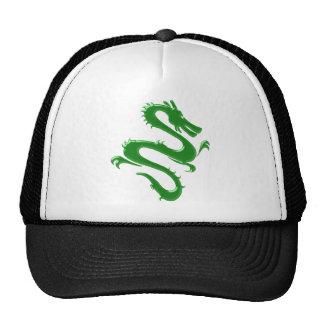Dragon green green dragon mesh hat