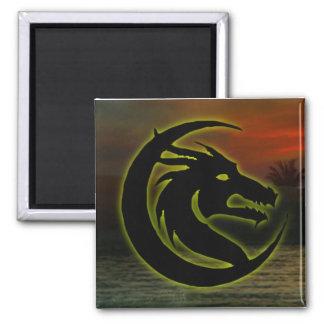Dragon head magnet