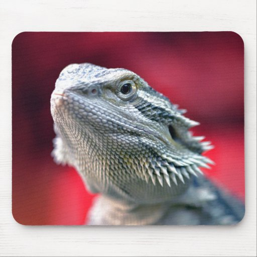 Dragon Head Mousepad