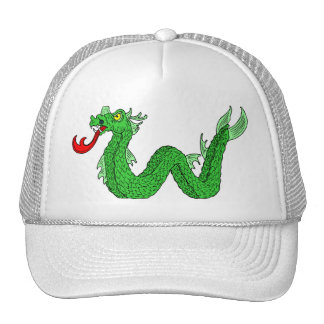 Dragon Image 14 Mesh Hat