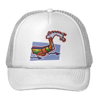 Dragon Image 19 Mesh Hats