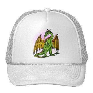 Dragon Image 26 Mesh Hats