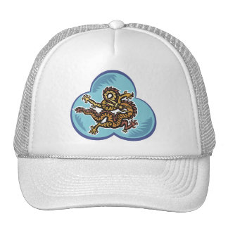 Dragon Image 43 Mesh Hat