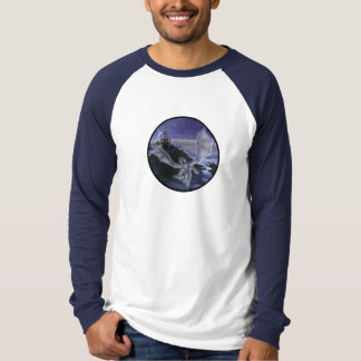 Dragon Long Sleeve Raglan T Shirt