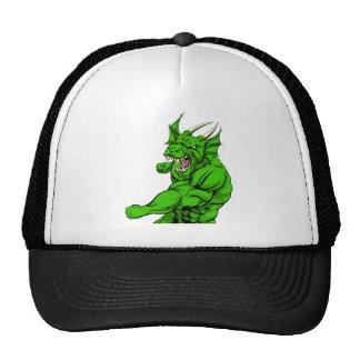 Dragon mascot fighting mesh hat