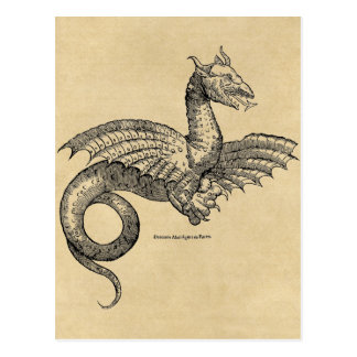 Dragon Parchment postcard