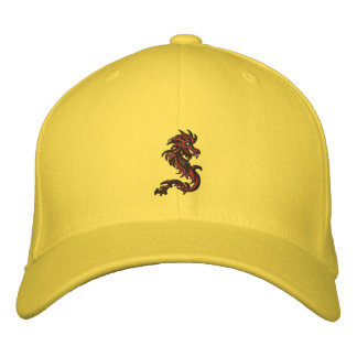 Dragon runner embroidered hat