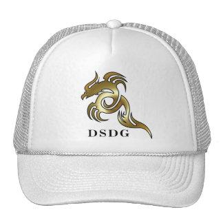 Dragon Speed Design Group hat