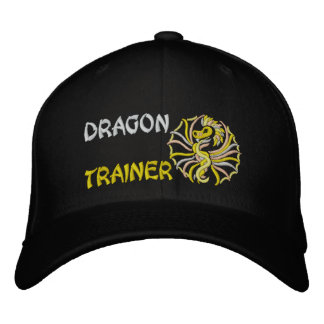 Dragon trainer baseball cap