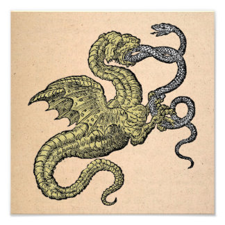 Dragon vs. Snake Photo Art
