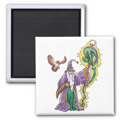 dragon wizard fridge magnets