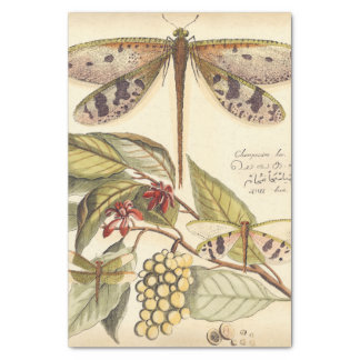 Dragonflies with Leaves and Fruit Tissue Paper