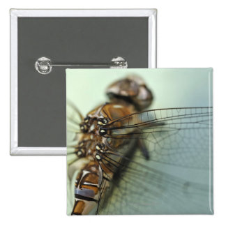 Dragonfly close-up 15 cm square badge