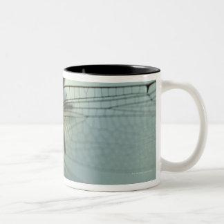 Dragonfly close-up Two-Tone coffee mug