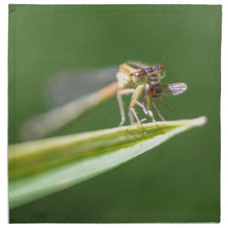 Dragonfly Eating Mosquito Cloth Napkins