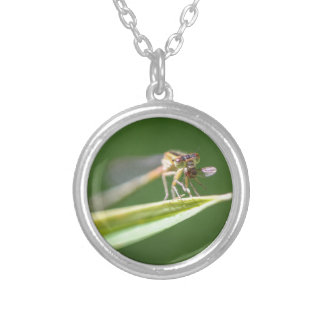 Dragonfly Eating Mosquito Silver Plated Necklace