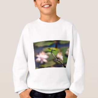 Dragonfly Handstand by Erina Moriarty Photography Sweatshirt