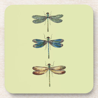 Dragonfly Illustrations Coasters
