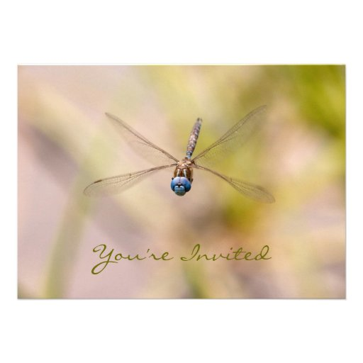 Dragonfly in Flight Photo Personalized Invite
