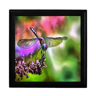 Dragonfly In Green and Blue Large Square Gift Box